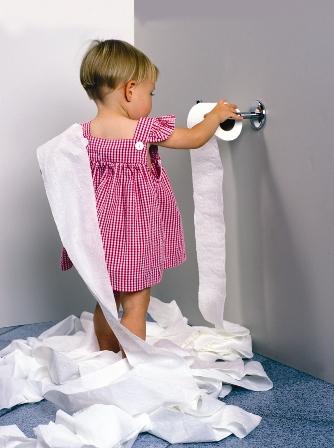 toilet-paper-toy