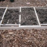 Starting a Raised-Bed Garden