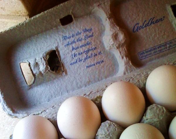 aldi-eggs
