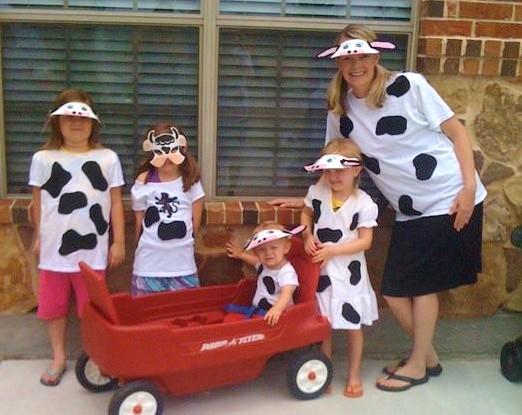 cows-3