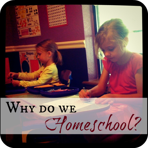"""homeschooling not the better choice 10 florida is not agnostic on its preference for what is """"best"""" for children on this  critical question in a major  other options to protect homeschooling for the."""