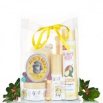 Burt's Bees Grab Bag: $50 worth of products for $25