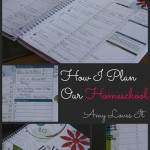 My Weekly Homeschool Plan {How We Homeschool}