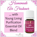 Homemade Air Freshener with Purification Essential Oil Blend |  AmyLovesIt.com