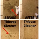Thieves_Cleaner_Before_After