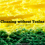 Cleaning without Toxins | AmyLovesIt.com #write31days