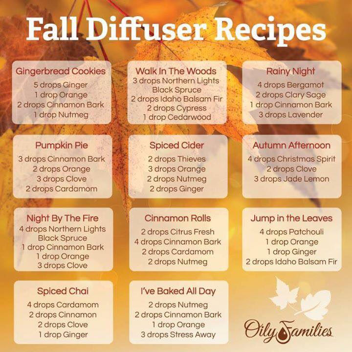 Fall Diffuser Aromas and Combinations