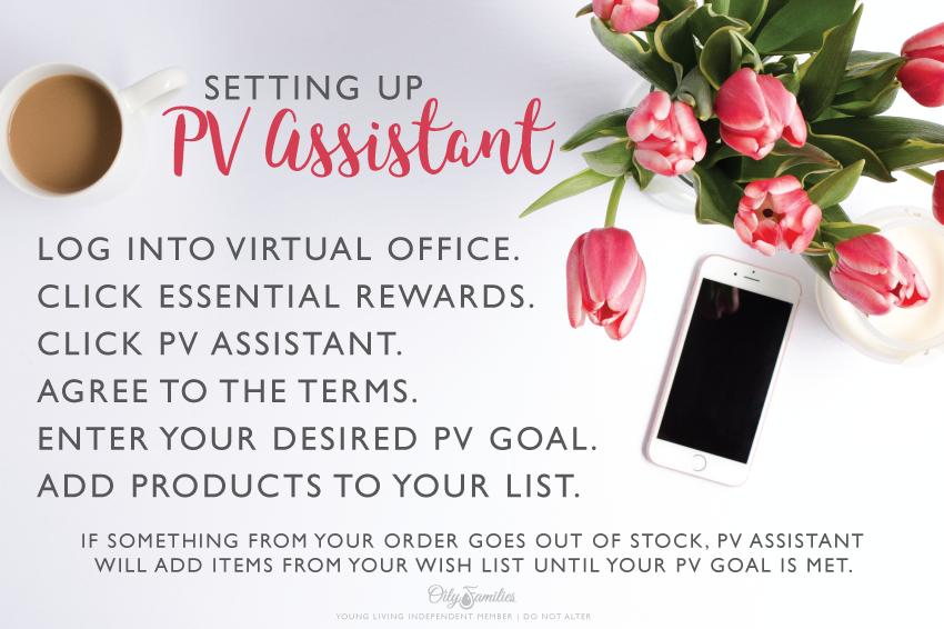 PV Assist