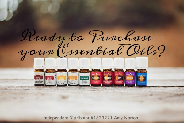 How to Purchase Young Living Essential Oils | AmyLovesIt.com