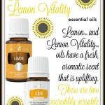 Lemon and Lemon Vitality Essential Oils | AmyLovesIt.com