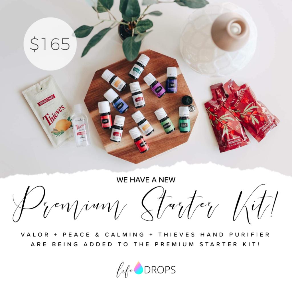 2019 Premium Starter Kit || AmyLovesIt.com