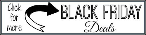Black-Friday-Banner-500.jpg