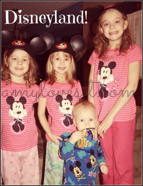 2014_3_Disneyland