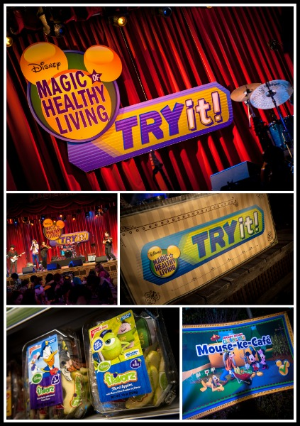 Disneyland_Day_Two_TryIt