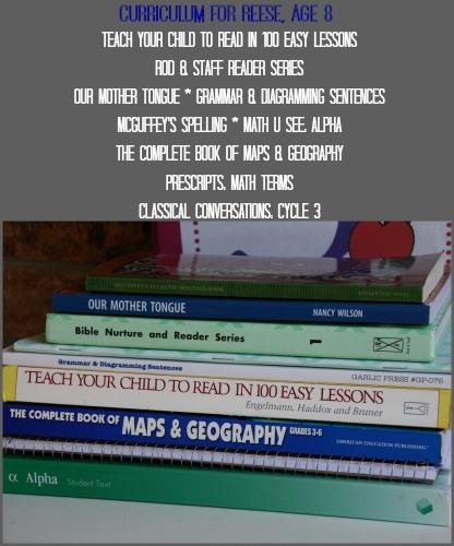 2014_8_REESE_Curriculum