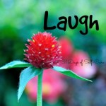 Laugh | AmyLovesIt.com #write31days