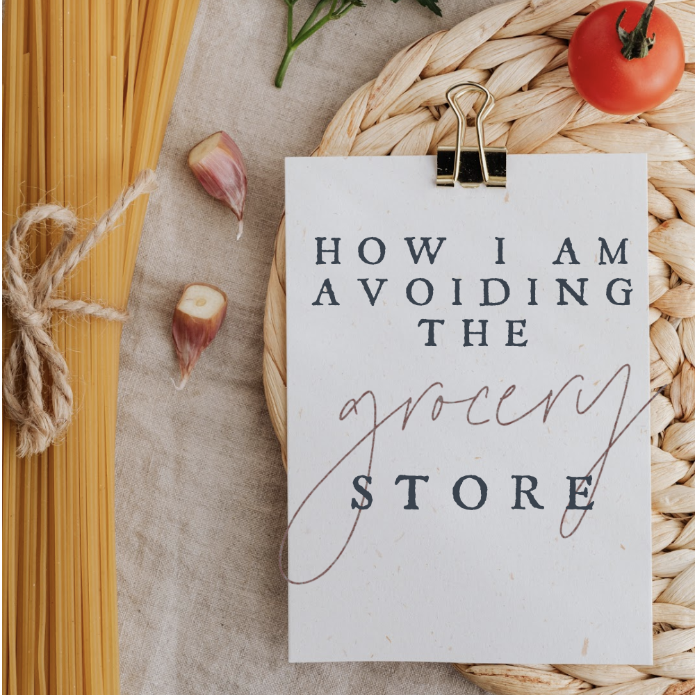 How I am Avoiding the Grocery Store || AmyLovesIt.com